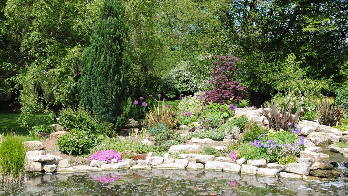 A stunning pond and rockery with waterfalls and a planting scheme