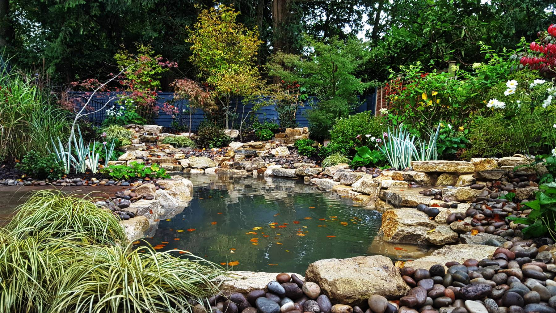 Home dixons landscapes for Garden design with pond and waterfall