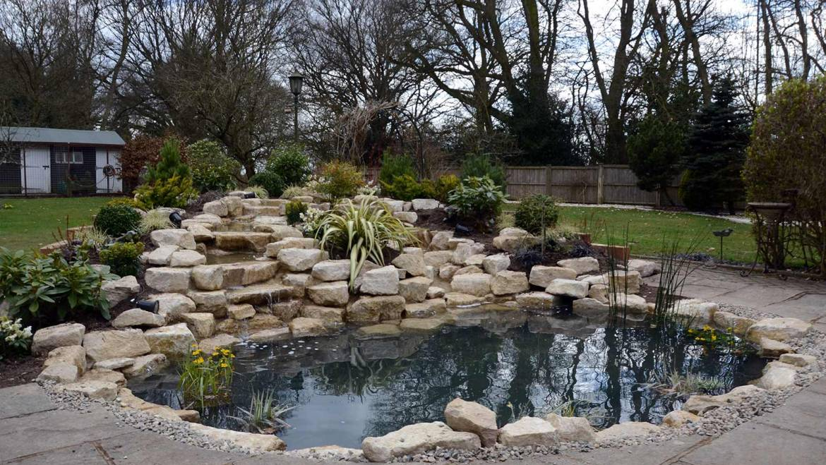 Aquatic Plants and Rockery Shrubs