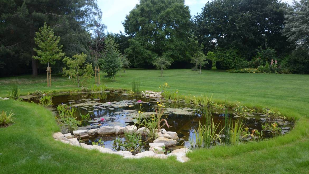 Beautiful natural pond dixons landscapes for Small garden pond care
