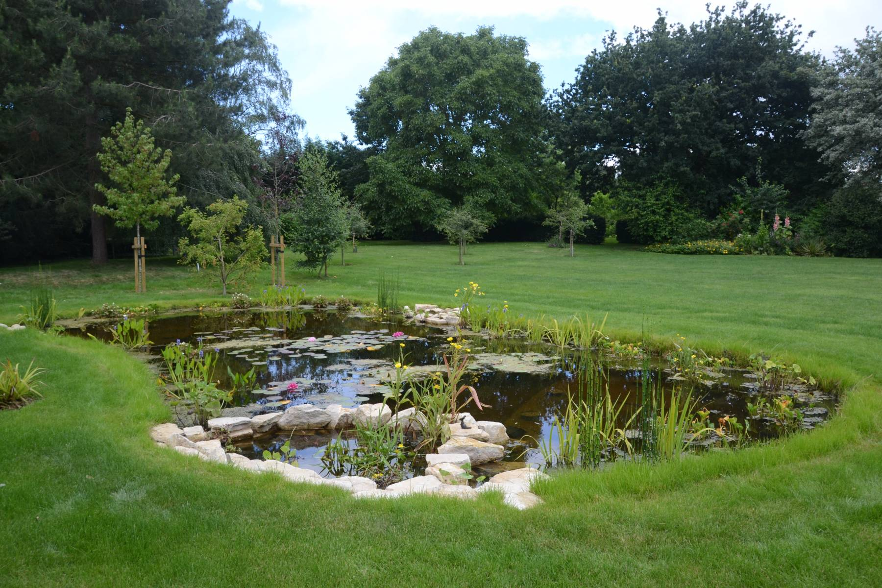 Home dixons landscapes for Small pond construction