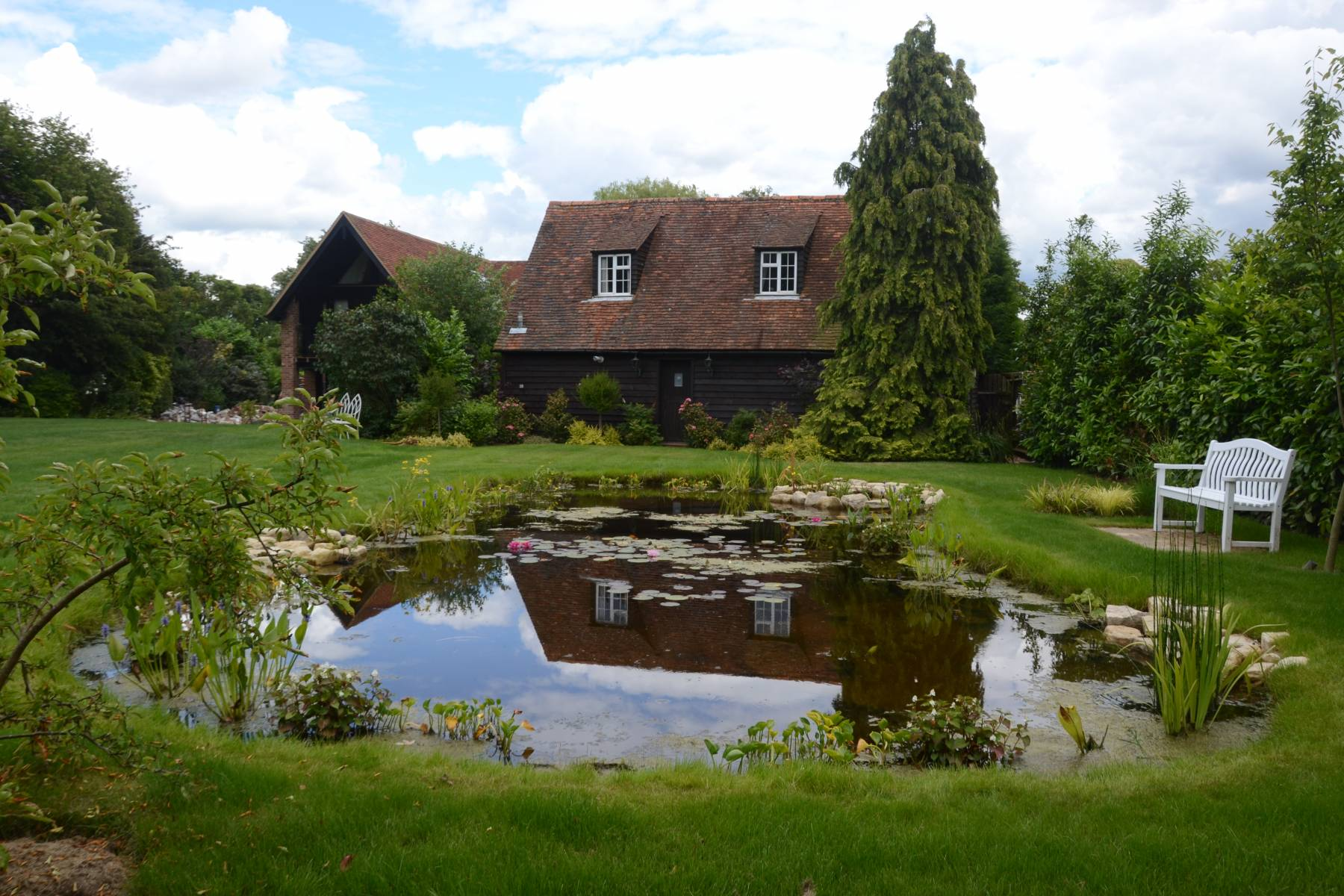 Home dixons landscapes for Pond expert