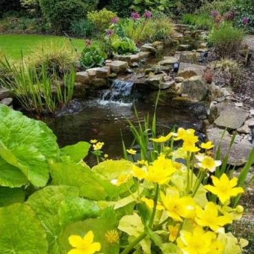 A New Pond, Rockery and Stream